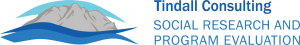 Tindall Consulting Logo